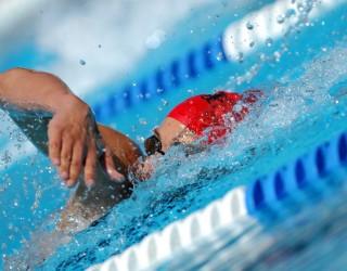 Un  club de natation en cours de création