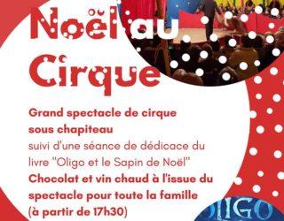 Noël au Cirque